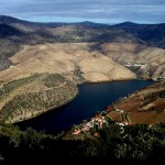 Vinícola Douro - Portugal